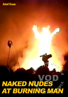 Naked Nudes At Burning Man Box Cover