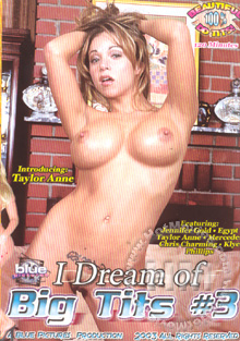 I Dream Of Big Tits #3 Box Cover