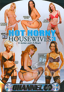 Hot Horny Housewives 3 Box Cover