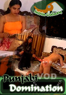 Punjabi Domination Box Cover