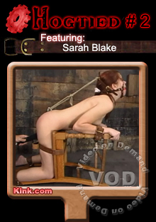 Hogtied #2 Featuring Sarah Blake Box Cover