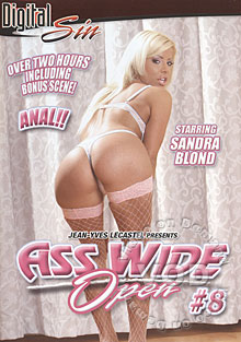 Ass Wide Open #8 Box Cover