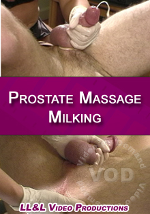 Prostate Massage Milking Box Cover
