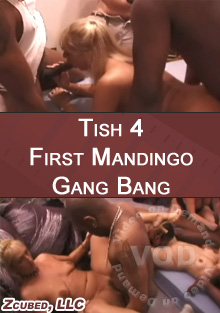 Tish 4 - First Mandingo Gang Bang Box Cover