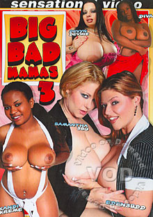 Big Bad Mamas 3 Box Cover