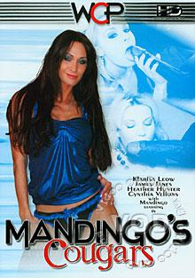 Mandingo's Cougars Box Cover