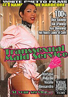 Transsexual Maid Service Box Cover
