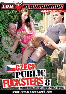 Czech Public Fucksters 8 Box Cover
